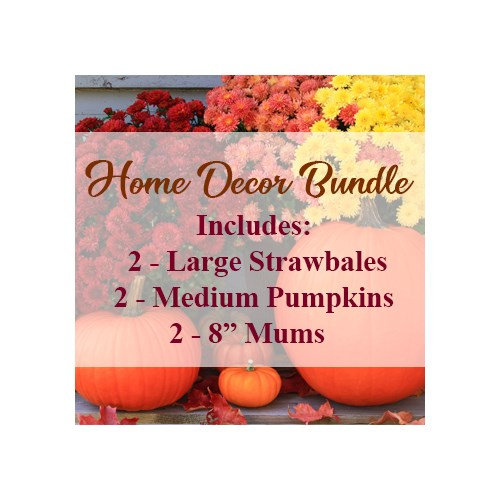 Home_Decor_Bundle